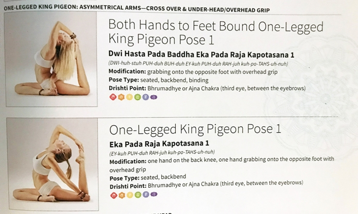 King Pigeon Pose from 2100 Asanas book